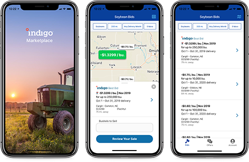Indigo Marketplace Native App